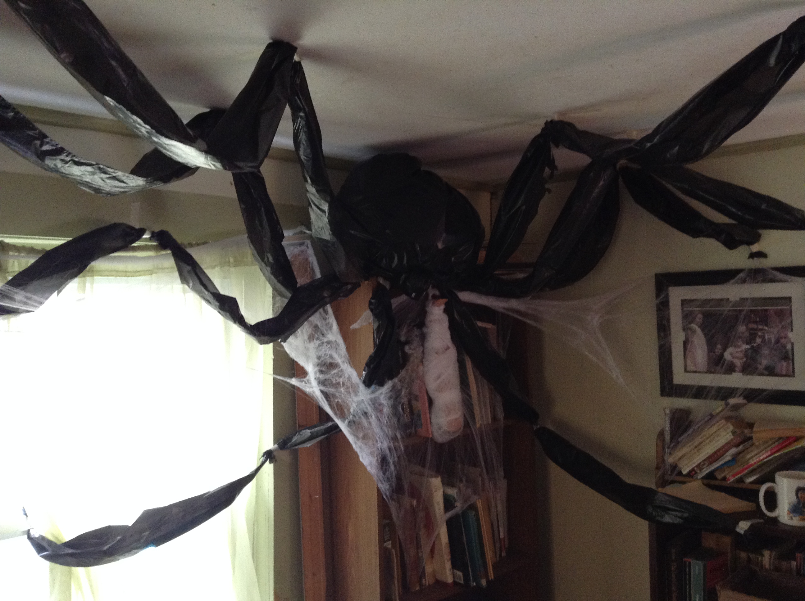 food blog spider