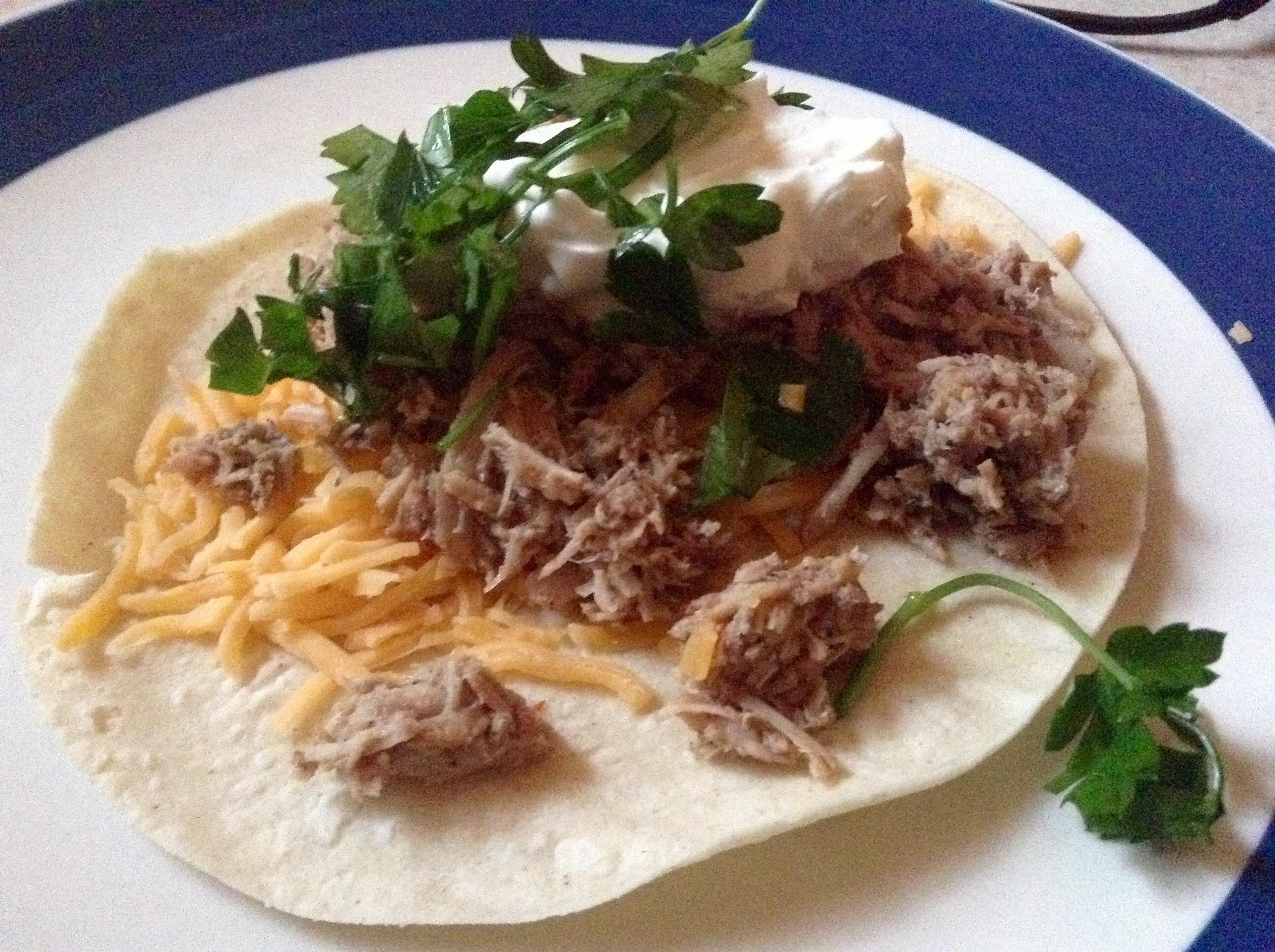food blog carnitas