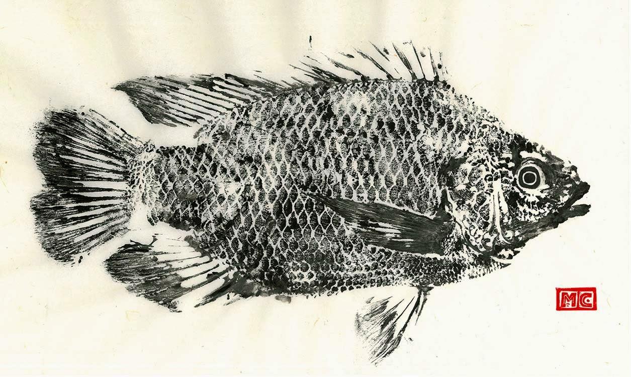 matt clark fish print
